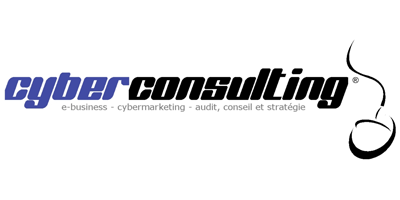 Cyberconsulting